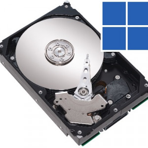 100 Disk Usage -- Featured - Windows Wally
